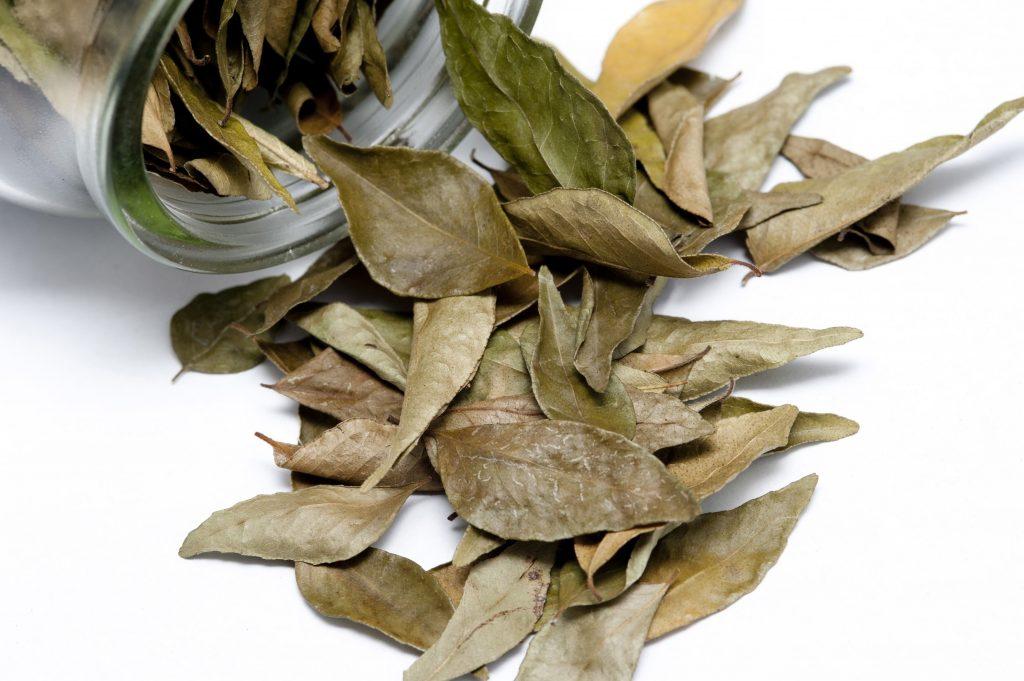 O metodă simplă de terapie, pe care o putem face singuri, cu rezultate foarte bune și necesită numai 15 grame frunze de dafin.